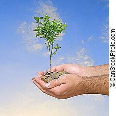 investering, om te, landbouw