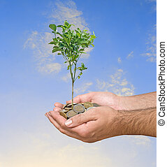 investice, do, zemědělství