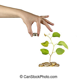 investieren, grün, Geschaeftswelt