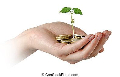investieren, zu, landwirtschaft