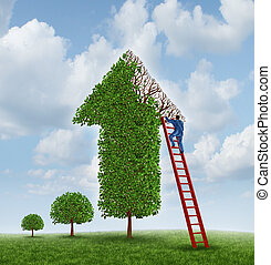 Investing advice and financial help with a tree shaped as an upward arrow with missing leaves on the branches and a businessman climbing a red ladder to inspect the problem and cure the wealth management challenge.
