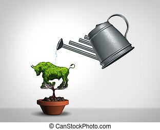 Investing In A Bull Market