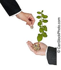 investissement vert, business