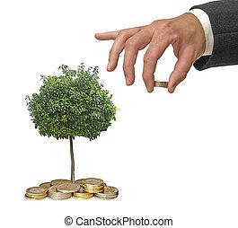 investition, zu, landwirtschaft