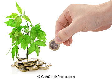 investment concept - Hand and green plant growing from the ...