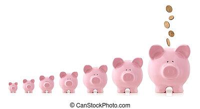 Investment Growth - Piggy Banks - Pink piggy banks...
