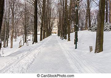 invierno, callejón