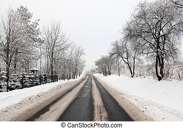 invierno, camino