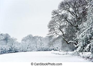 invierno, campo, nieve, inglés, paisaje rural