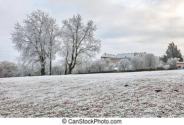 invierno, cerveny, kamen, eslovaquia, castillo, paisaje