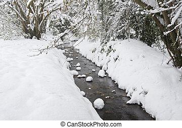 invierno, corriente, nieve, profundo, corriente, por, bosque