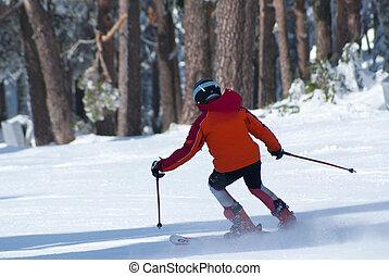 invierno, cuesta abajo esquiar, mujer, hombres, esquí