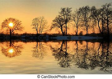 invierno, de, oro, ocaso