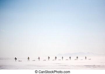 invierno, desierto, aventura
