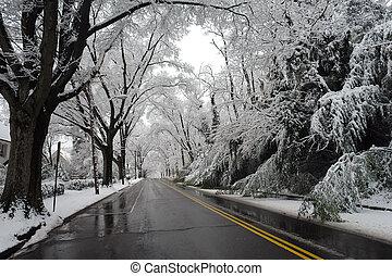 invierno, en, washington dc