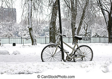invierno, equitación