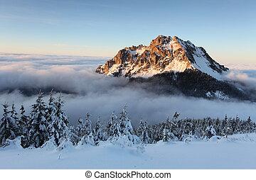 invierno, eslovaquia, paisaje de montaña