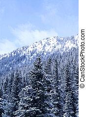 invierno, montaña