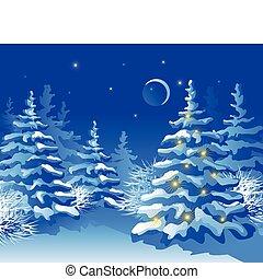 invierno, navidad, bosque, por la noche