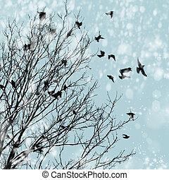 invierno, nieve, aves