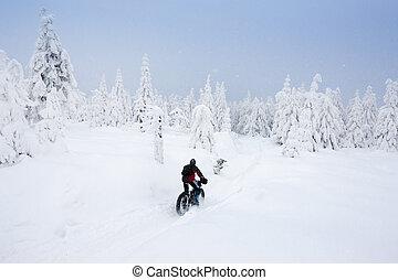invierno, orlicke, checo, biker, república, montañas