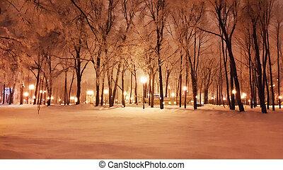 invierno, parque, -, kharkiv, enero, 2017