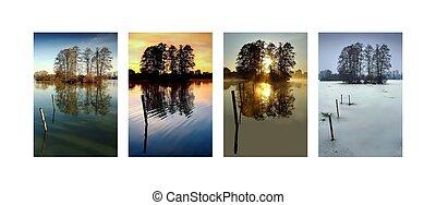 invierno, primavera, estación, -, colección, cuatro, otoño, verano