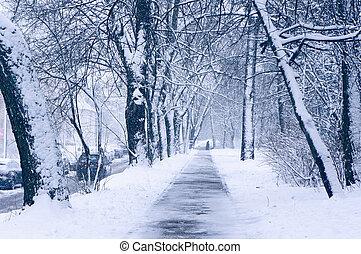 invierno, urbano, scene.
