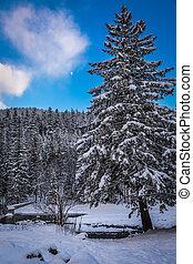 invierno, vista, de, un, valle de montaña, en, ocaso