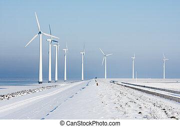 invierno, windturbines, largo, holandés, paisaje, fila