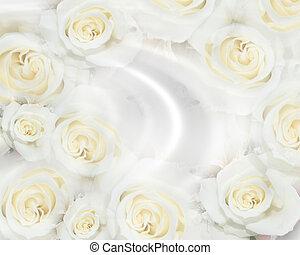 invitación boda, blanco, rosas
