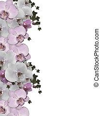 invitation mariage, frontière, orchidées, lierre