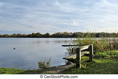 Shore line with grass and bench, leading to expansive lake bordered by a tree line and blue sky and white clouds