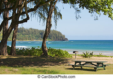 Inviting Tropical Park - Halalei Bay, Kauai, Hawaii