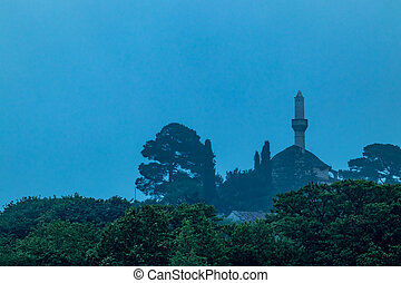 Ioannina, Greece, mosque with trees and thick fog