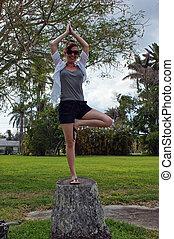 ioga, ao ar livre, pose árvore