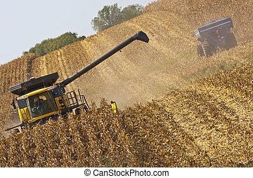 A combine and a tractor work to harvest a Midwest corn crop in Northeast Iowa.