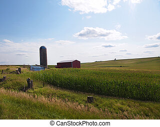 Iowa Farmland - A typical countryside scene in the state of...
