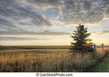 Iowa Landscape at Sunrise