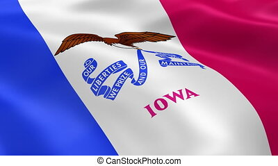 Iowan flag in the wind