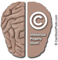 ip, propriété intellectuelle, bien, droit d'auteur