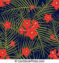Cypress Vine Flower on Navy Blue Background - Ipomoea...