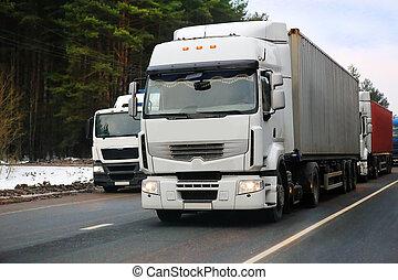 ir, invierno, camiones, carretera