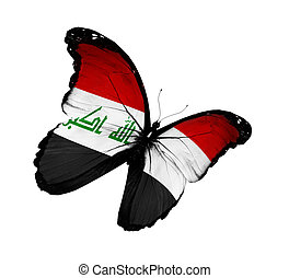 Iraqi flag butterfly flying, isolated on white background