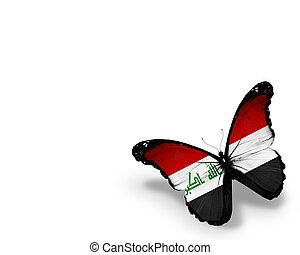 Iraqi flag butterfly, isolated on white background