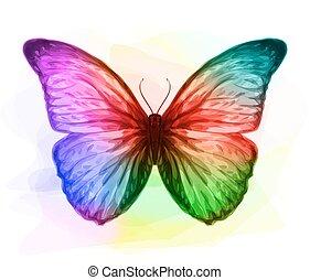 iridescen, butterfly., colours.
