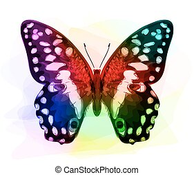 iridescen, colours., butterfly.