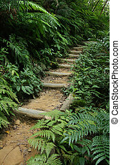 iriomote, isla, -, mariyudo, cascada, pasos, japón, viaje dificultoso, okinawa