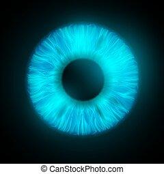 iris, ögon, mänsklig