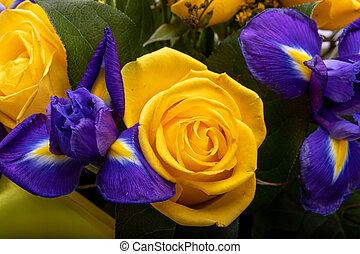 iris, blaues, rosen, floristic, blumengebinde, gelber , ...
